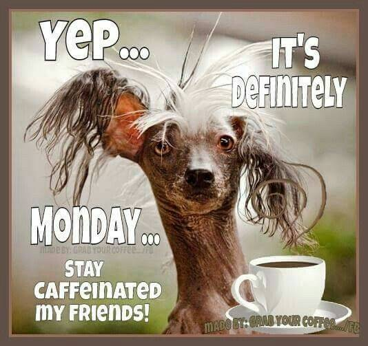 It's Monday Stay Caffeinated